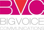 BVC_identity_color-1