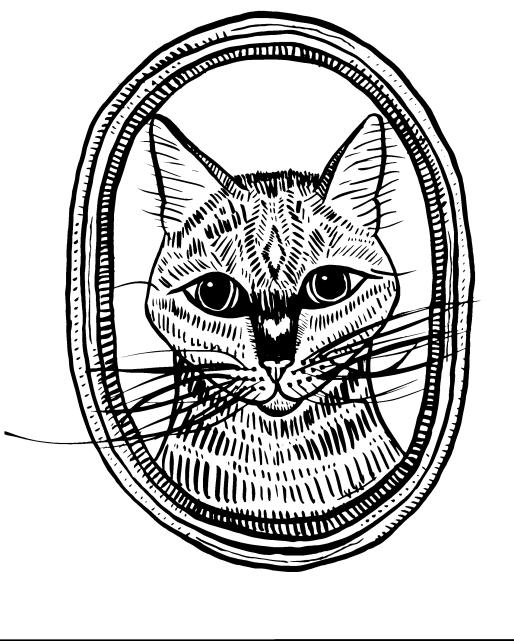 Violet-CAT (1)